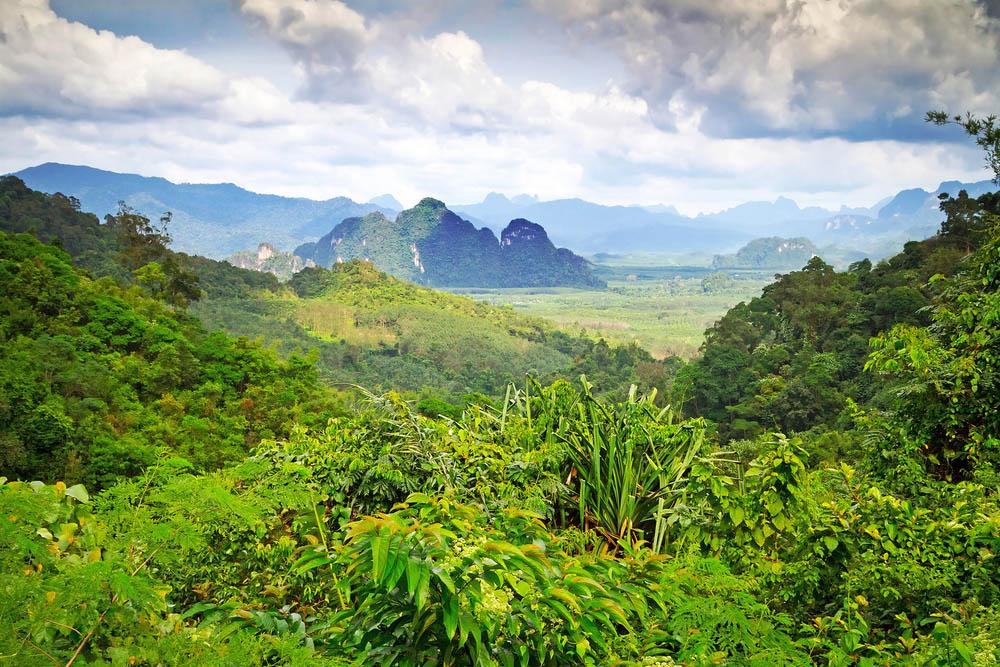 El Parque Nacional de Khao Sok